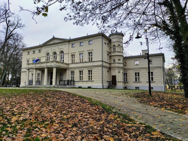 Pałac w Rakoniewicach